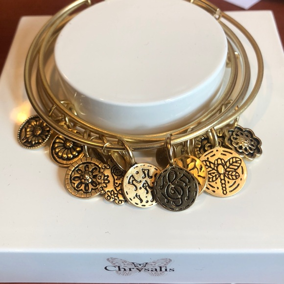 c89fee010a95a LIKE ALEX & ANI - SPIRITUAL BANGLES by CHRYSALIS Boutique
